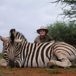 Burchell's Plain Zebra