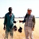 Bird Hunting Africa