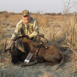 Black Wildebeest