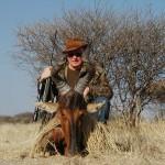 Red Hartebeest